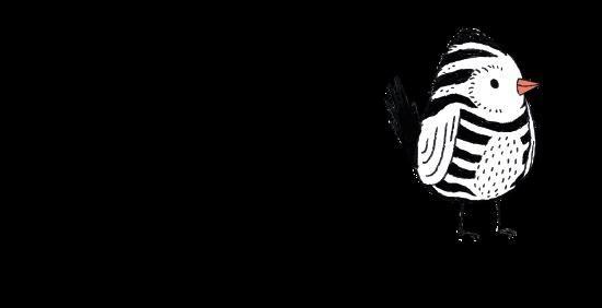 Zebrafink